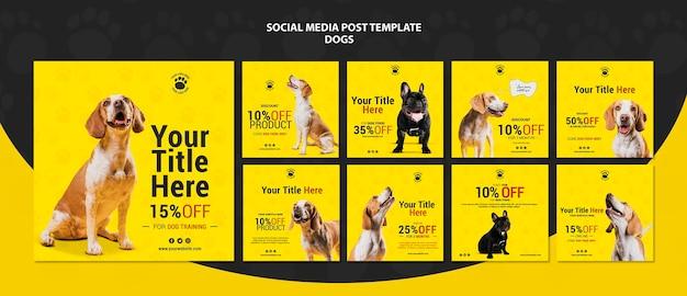 Postagens de mídia social com desconto para cães