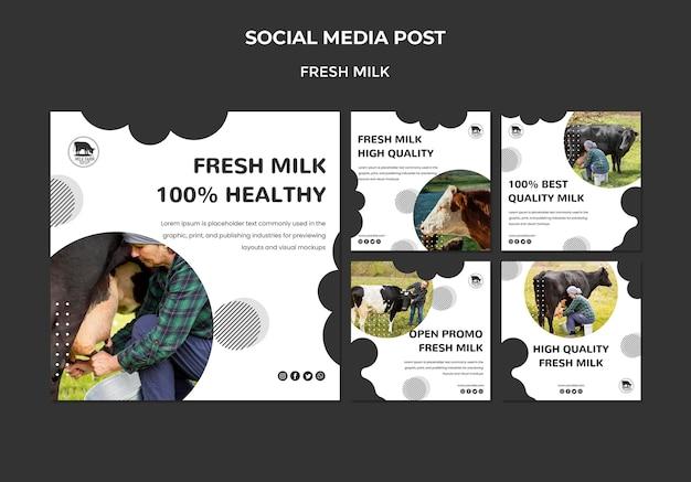 Postagens de mídia social de leite fresco