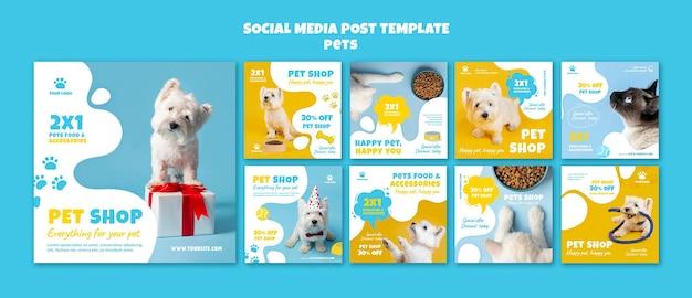 Postagens de mídia social sobre loja de animais