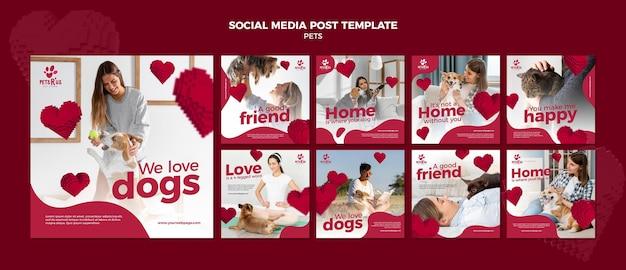 Postagens de redes sociais de animais de estimação com foto