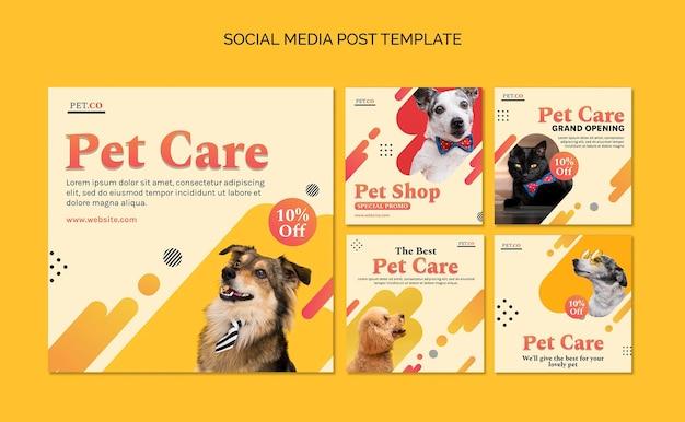 Postagens em mídias sociais de pet shop