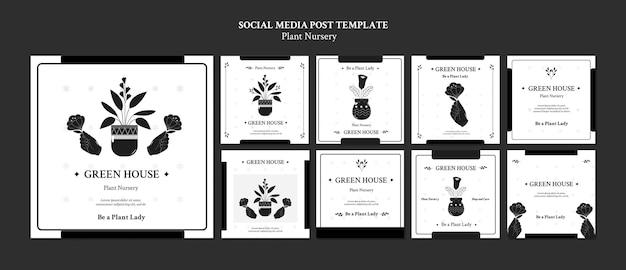 Postagens em redes sociais de viveiros de plantas