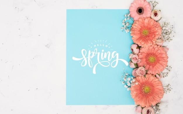 Postura plana de rosas da primavera e gerbera