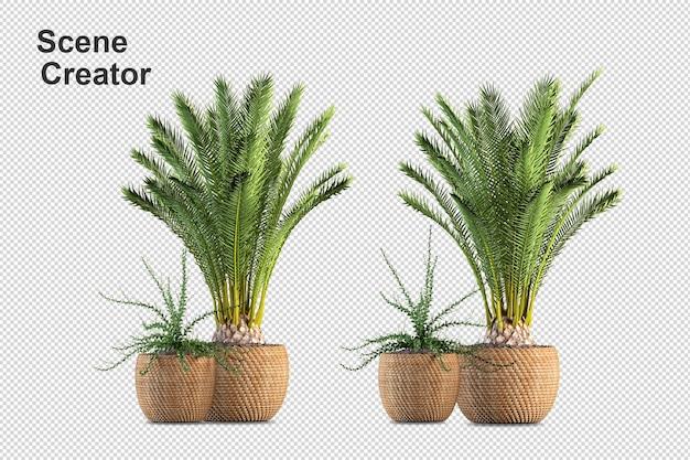 Projeto de plantas em vários ângulos criador de cena