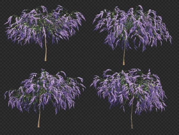 Renderização 3d da coleção de árvores da coroa da rainha