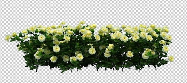 Renderização 3d de brush tree com flores isoladas