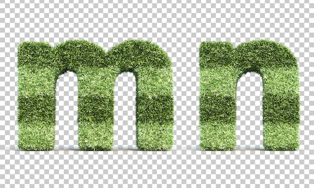 Renderização 3d de grama jogando campo alfabeto me alfabeto n