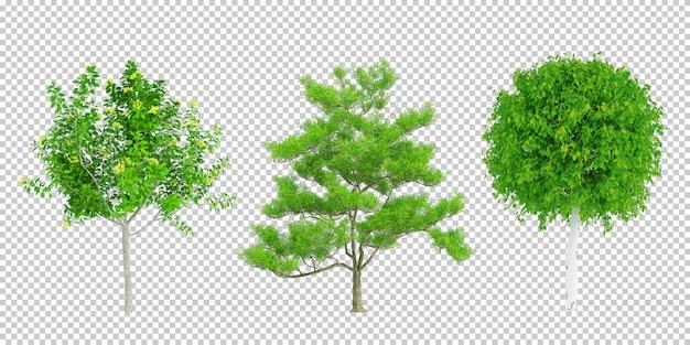 Renderização 3d de plantas isométricas
