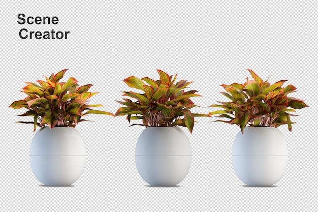 Renderização 3d de vários tipos de arranjos ornamentais