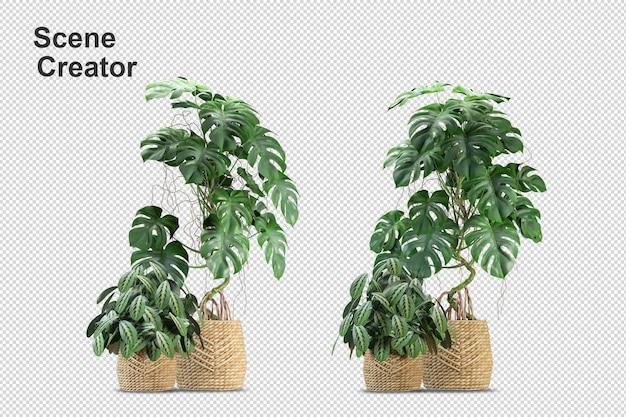 Renderização 3d de vários tipos de árvore