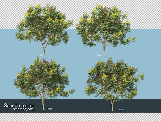 Renderização 3d de vários tipos de árvores