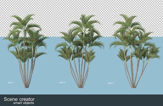 Renderização 3d de vários tipos de palmeiras
