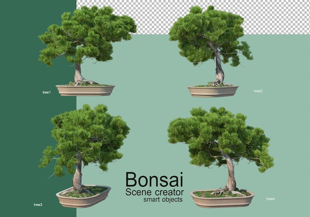 Renderização 3d do arranjo de árvores bonsai
