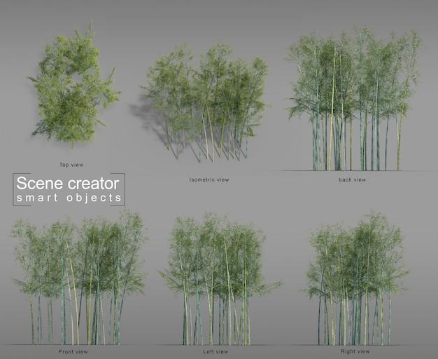 Renderização 3d do criador da cena de bambu