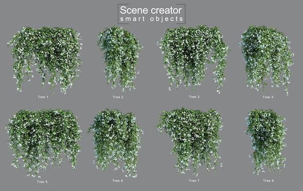 Renderização 3d do criador de cena de jasmim estrela suspenso