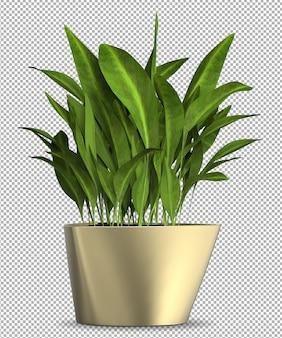 Renderização de planta 3d de planta isolada em vaso