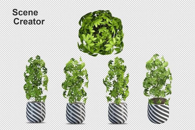 Renderização de planta isolada de parede transparente de vista frontal isométrica