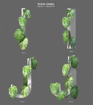 Renderização em 3d de monstera rastejante no alfabeto i e no alfabeto j