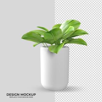 Renderizando plantas em decoração de vasos