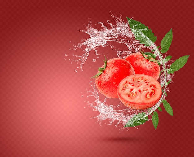Respingos de água em tomates frescos com folhas isoladas em fundo vermelho. psd premium