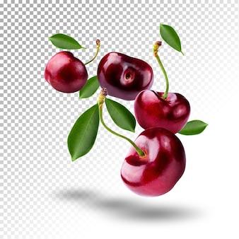 Salpicos de água em cerejas doces frescas