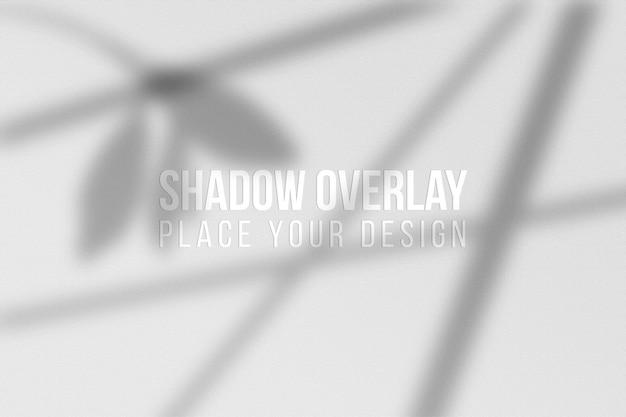 Sobreposição de sombras de folhas e conceito transparente de efeito de sobreposição de sombras de janela