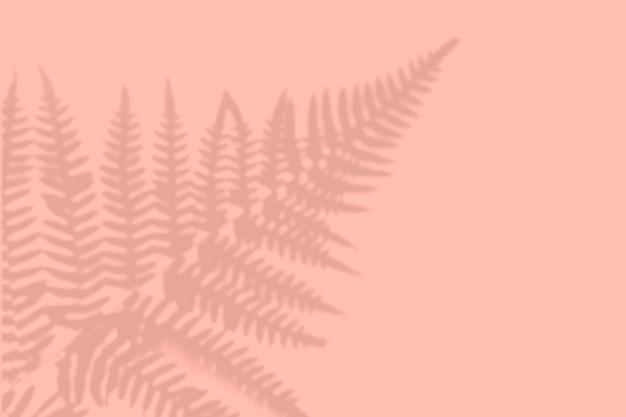 Sombra de folhas na parede