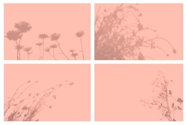 Sombra de folhas tropicais em conjunto de apresentação de efeitos de iluminação natural