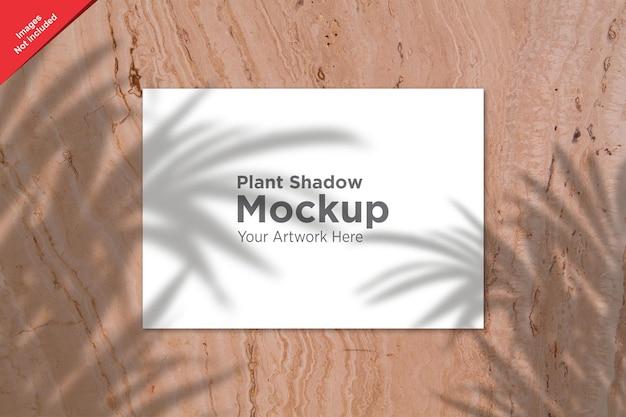 Sombra de planta sobre design de maquete de folha