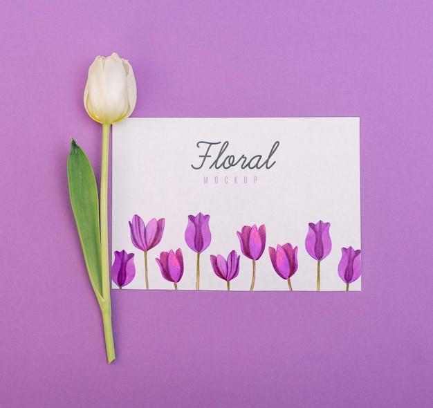 Tulipa branca leiga plana ao lado de maquete de cartão