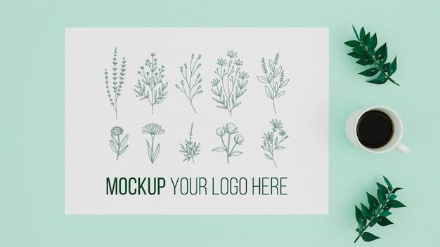 Vários desenhos de maquete botânica de folhas