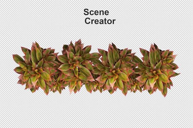 Vários tipos de renderização 3d de grama