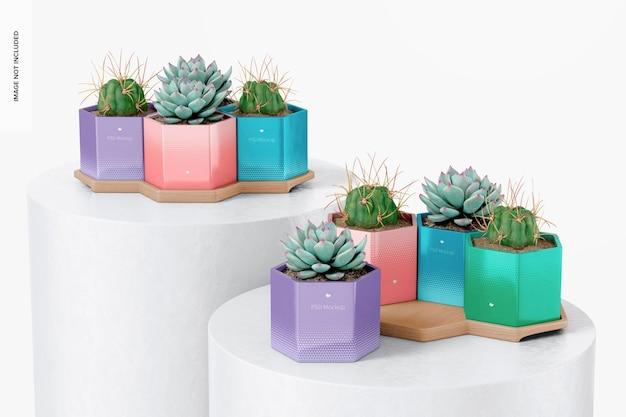 Vasos hexagonais com bandeja de bambu em maquete de pódios