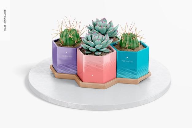 Vasos hexagonais com maquete de bambu