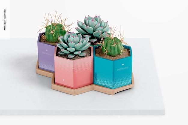 Vasos hexagonais com maquete de bandeja de bambu, na superfície