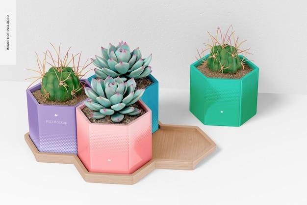 Vasos hexagonais com modelo de bandeja de bambu, vista superior
