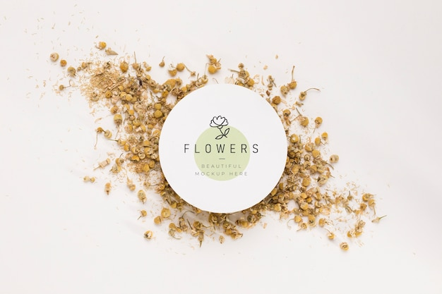 Vista superior conceito de maquete de flores