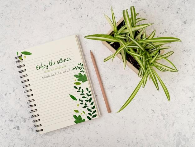 Vista superior da planta cercada por bloco de notas com maquete