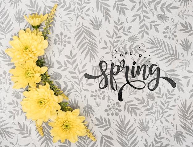 Vista superior da primavera gerbera