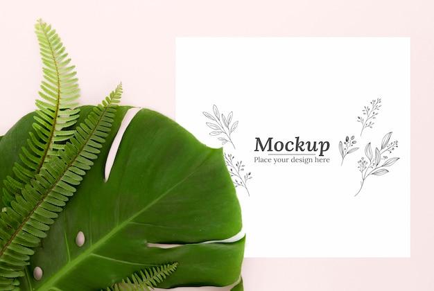 Vista superior do arranjo de folhas verdes com maquete