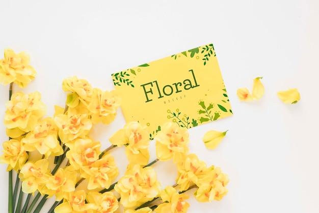 Vista superior flores com espaço de cópia