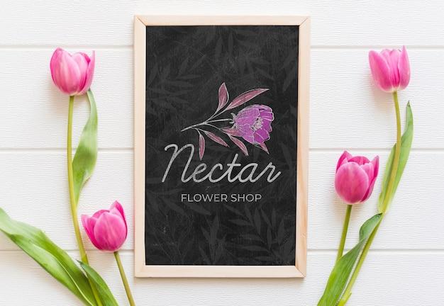 Vista superior lindas flores tulipa