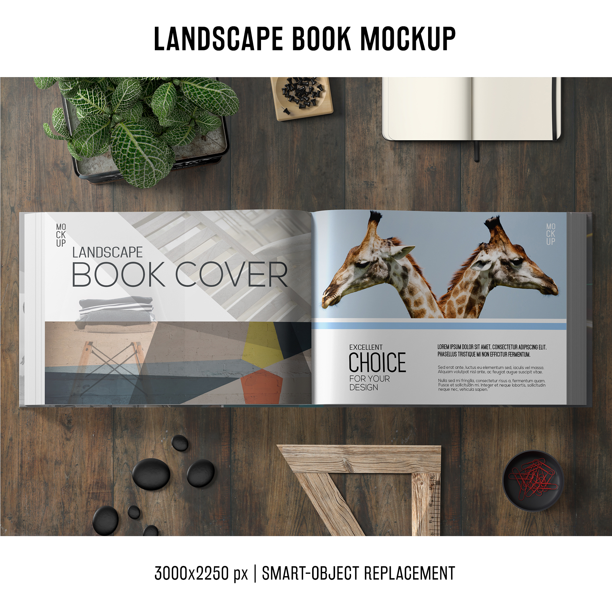 Lanscape Buch Mockup