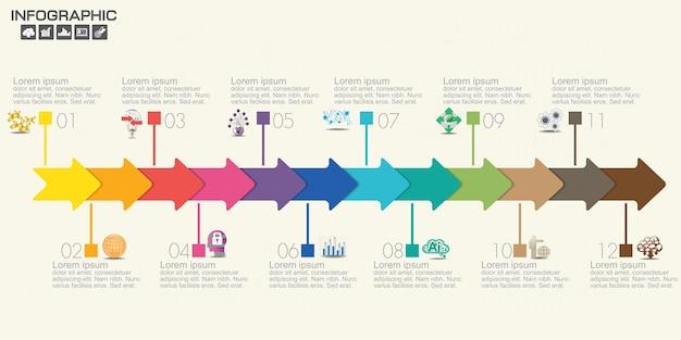 12 étapes du modèle d'infographie de chronologie avec des options, diagramme de processus.
