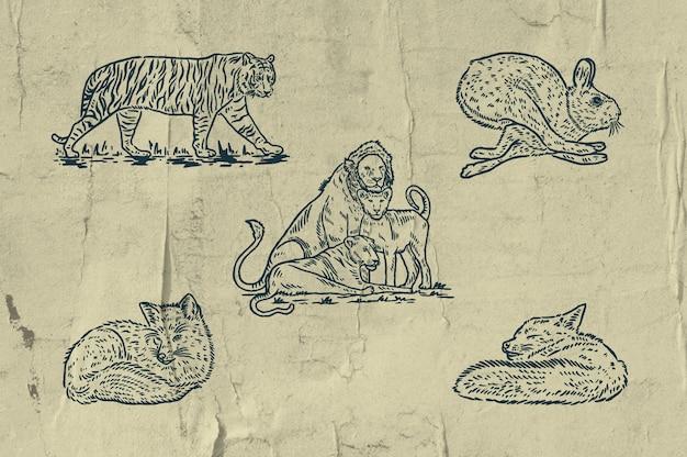 5 mamalias illustration - tigre - familles de lions - lapin le plus rapide - lazy fox