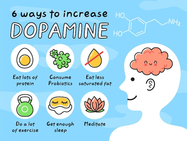 8 façons d'augmenter la dopamine infographie