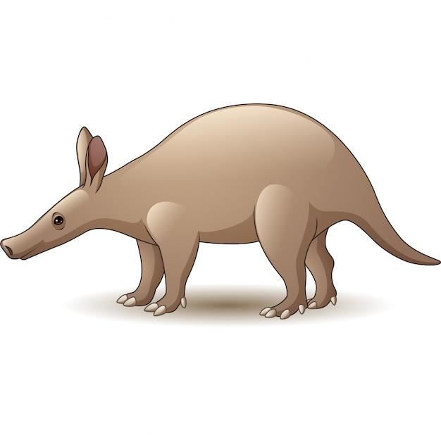 Aardvark de dessin animé isolé sur fond blanc
