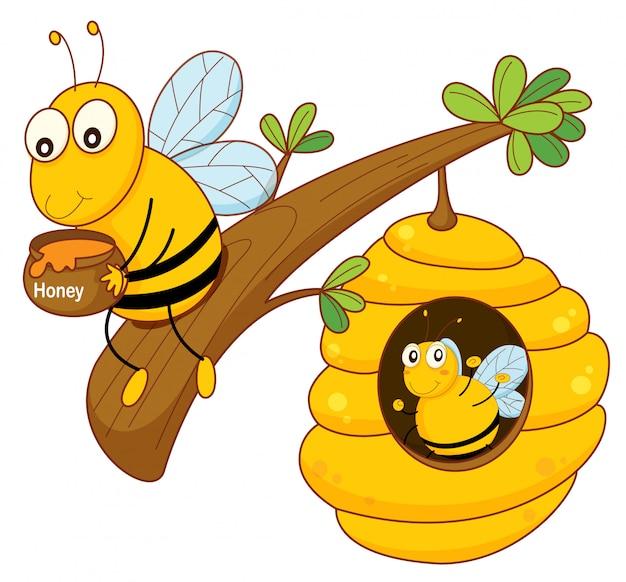Abeille à miel et peigne