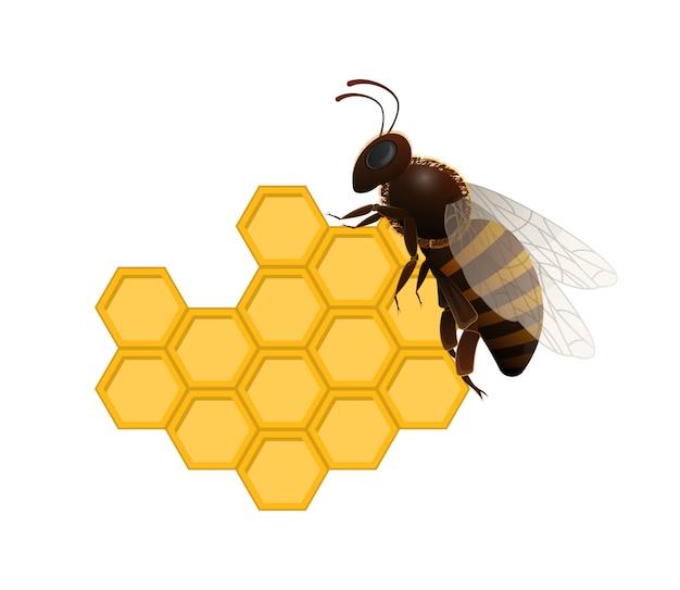 Abeille sur le symbole frais en nid d'abeille