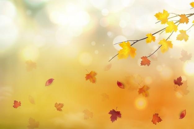 Abstrait d'automne.